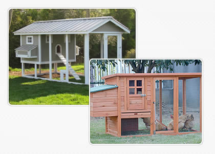 There are two kinds of chicken coops shown to us, both of them are fashionable and with large run for chickens living.