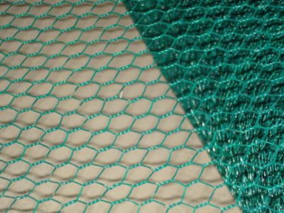 This is a PVC coated hexagonal wire mesh roll with the color of green.