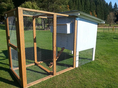 One stainless steel wire chicken cage attached with the large run space and living nest.