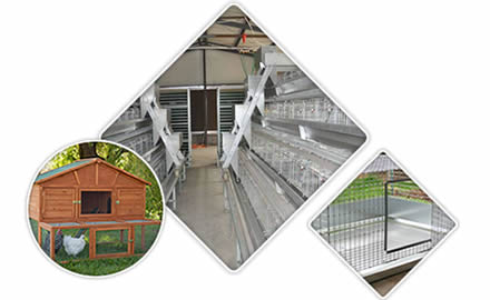 Chicken coop, professional breeding chicken cage, common used welded chicken cage are shown.