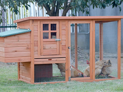 Here is a modern chicken coop above the lawn, with three chickens in it.