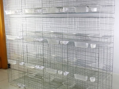 This cage is four tires with twelve small cages, there are food feeder, water cup and pigeon nest in each small cage.
