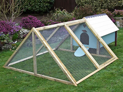 A hen house with an A frame enclosure, looks beautiful with some flowers around it.