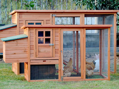 This kind of hen house looks fashionable, and there are some chickens running in it.