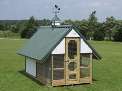 The pigeon loft designed with gable roof, big front door and comfortable living nest.