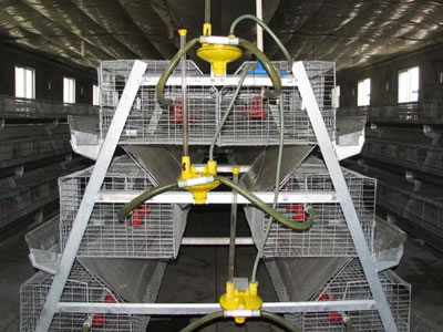 One system chicken cage which has three tiers, with some related equipment attached for chicken breeding.